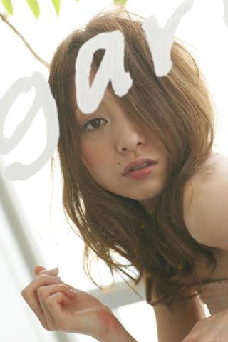 2008sp_01